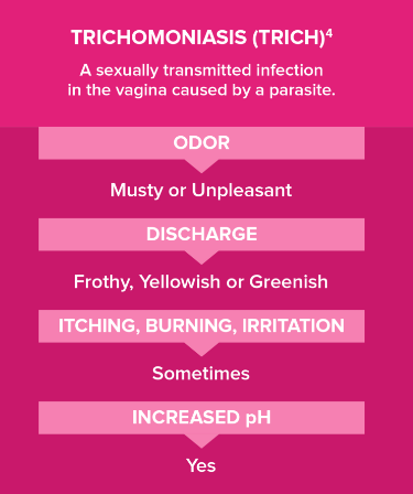 trichomoniasis common symptoms